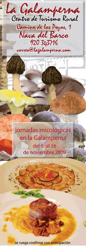 Galamperna, turismo rural, Nava deL Barco, Gredos, jornadas micológicas, Julián jiménez, diseño jesús garcía jiménez