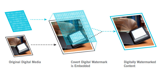 drm watermarking